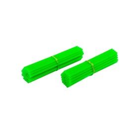 Capa de Raio Lizard - Verde