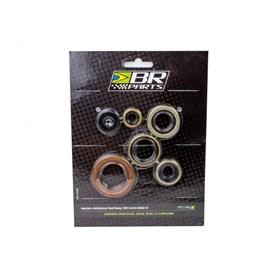 Retentor De Motor Kit BR Parts CRF 450 02/16